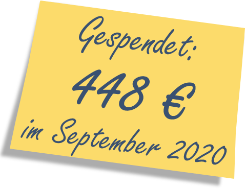 We donated: 448 EUR in September 2020.