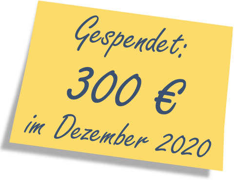 We donated: 300 EUR in December 2020.